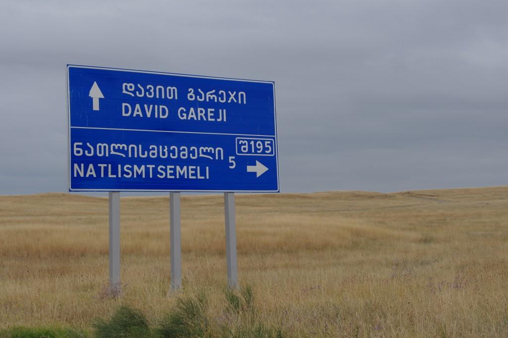 David Gareji