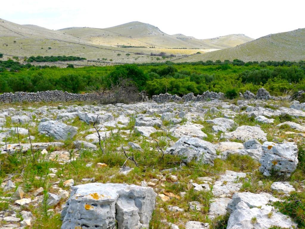 La Dalmatie, Croatie