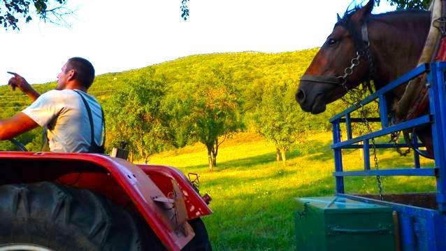 Ruralité en Croatie